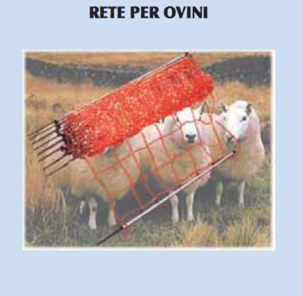 Rete per ovini con paletti recinti elettrici sabart for Recinto elettrico per capre